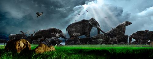 Эпизод 6. Большие стада